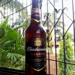 Beer Review: Budweiser Magnum