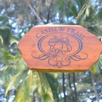The Cashew Trail @ Park Hyatt, Goa