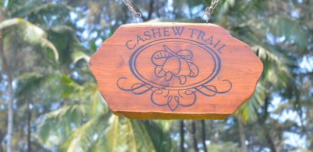 The Cashew Trail @ Park Hyatt, Goa