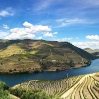 Douro Dreaming