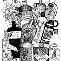 The Bluffer's Guide to Gin